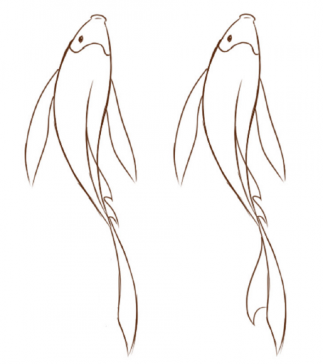 简单的鲤鱼简笔画卡通画绘画教程