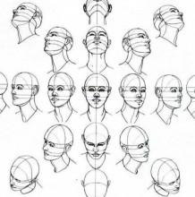 人体头部各个角度的展示和结构分解图
