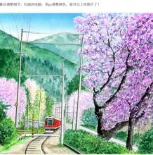 浪漫的樱花盛开列车驶过的水彩画上色教程 很唯美有意境