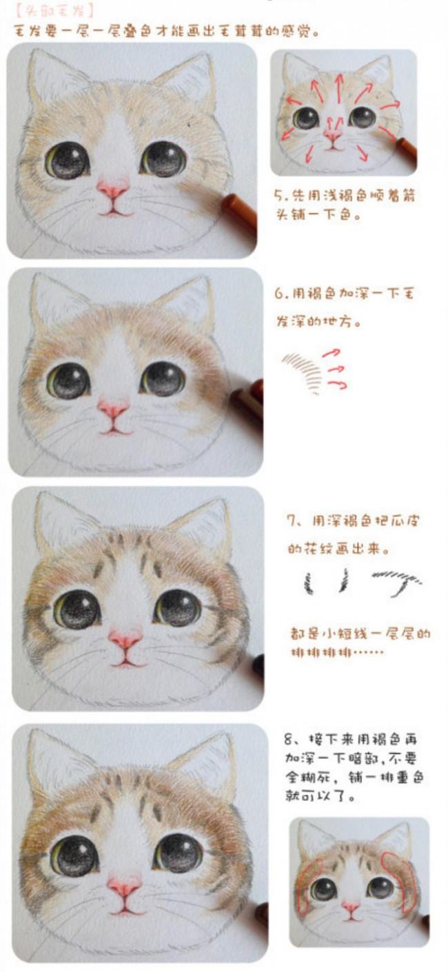 猫咪毛发绘画上色步骤和技巧讲解 精美细腻的猫咪头部