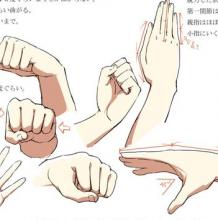 史上最全手部姿势动作分解演示素材和教程