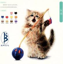 站立的猫咪玩球画面绘画教程 铅笔画画法 毛茸茸逼真细腻