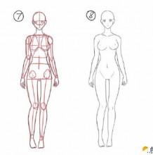 从起笔演示女性人体绘画步骤 女性人体身体比例结构图 包含头部特写