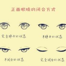 人物不同角度眼睛闭合方式展示 正面,侧面,仰视,俯视眼球变化规律结构展示