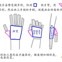 手把手教你画好手掌手部的插画漫画教程 超详细多角度讲解手部结构和画法