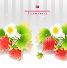 怎么画清晰粉嫩的草莓? PS 带线稿与彩色的草莓绘画大全教程素材
