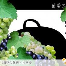 带线稿的葡萄绘画教程 不同种葡萄的画法 线稿与成品教程素材