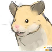 萌萌哒的仓鼠怎么绘画 带线稿的仓鼠绘画分解教程 ps有画仓鼠手脚素材