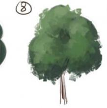 一棵绿油油的树插画教程 带线稿与上色的成品插画分解齐全素材