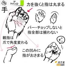 手的不同姿势简单画法步骤  手的伸展和握拳姿势插画绘画步骤教程