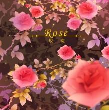 好看鲜艳的玫瑰花怎么绘画 PS玫瑰的插画教程 细致分解的插画素材