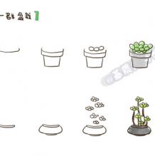 常见植物盆栽最简单的简笔画画法 如何简单的画出好看的盆栽植物
