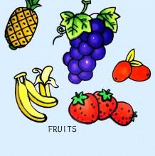 水果简笔画教程 水果简笔画怎么画 常见水果的简笔画画法