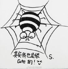 蜘蛛爬在网上简笔画教程图片 简笔画蜘蛛和蜘蛛网怎么画 蜘蛛的画法