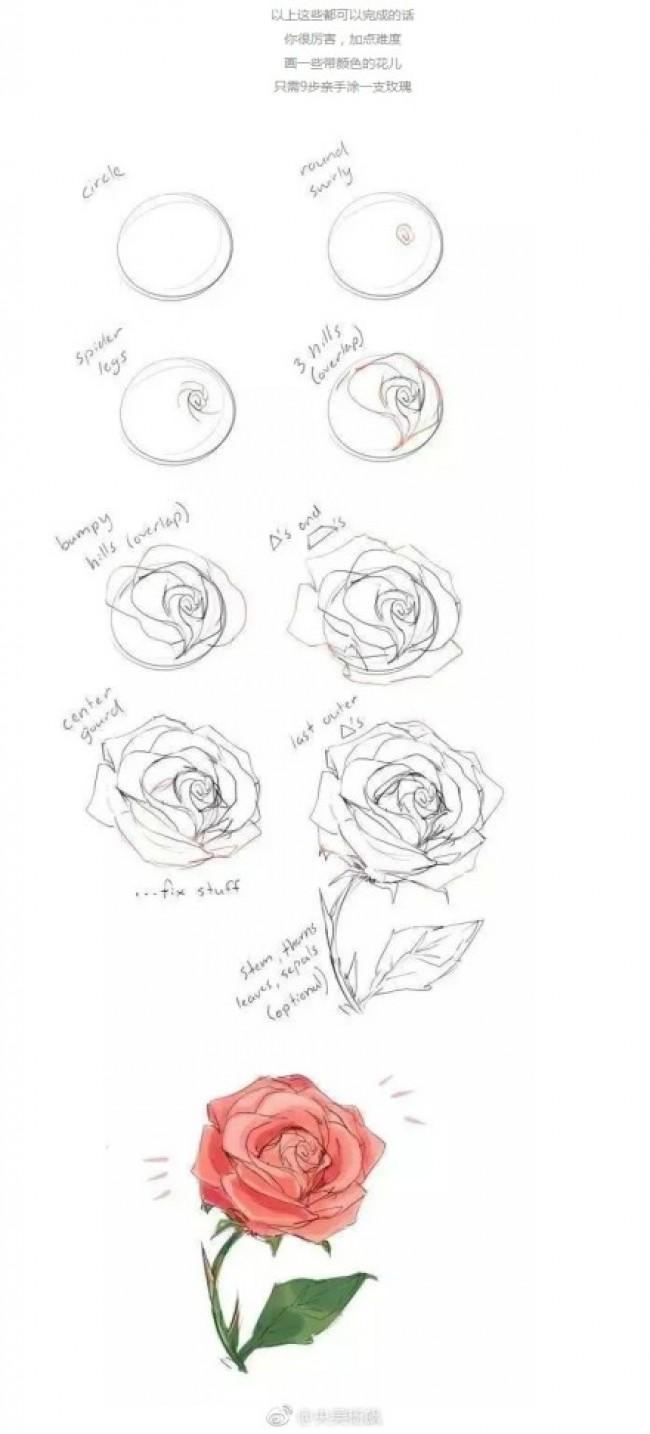 一朵逼真漂亮的玫瑰花是怎么画出来的 好看的玫瑰花简笔画教程图片_ww
