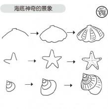 贝壳海星和海螺的简笔画教程图片 海底贝壳海星和海螺的画法和怎么画方法
