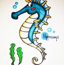 海马简笔画教程图片彩色 海马怎么画 海马的画法