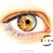 老外超逼真眼睛的彩铅绘画教程步骤图片 上色绘画演示