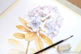 一组很美的花朵水彩画作品图片 女生看到了都会喜欢的