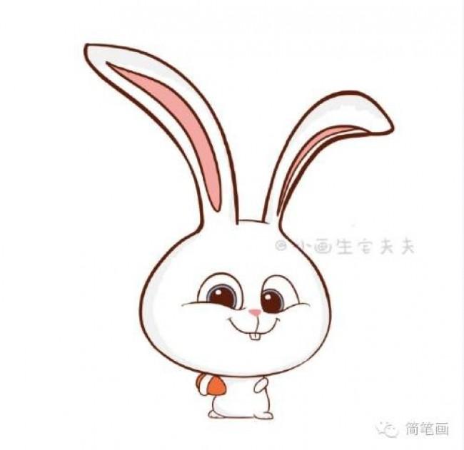 爱宠大机密 兔子小白简笔画小兔子简笔画步骤小兔子图片卡通 图片 9P