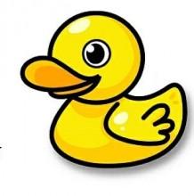 小黄鸭怎么画?可爱卡通鸭子的画法 小黄鸭简笔画绘画教程手绘