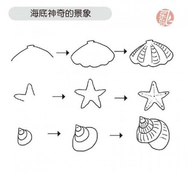 简单又可爱的小海星画法 海星简笔画怎么画 海星卡通画(2)