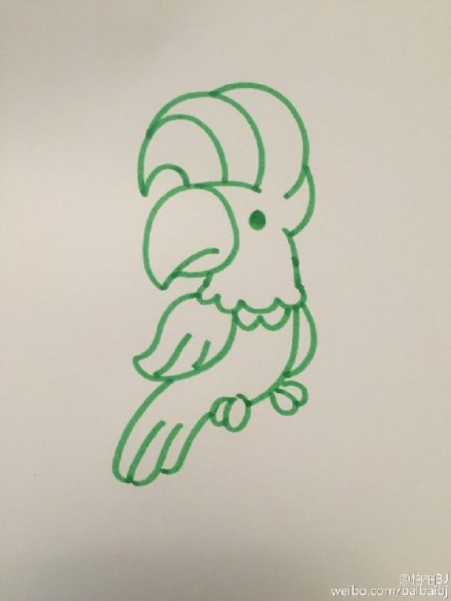 神气的鹦鹉卡通画怎么画 鹦鹉简笔画画法 鹦鹉的画法 鹦鹉儿童画教程