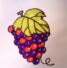 一串葡萄怎么画?葡萄的简笔画画法 普通儿童画卡通画手绘教程