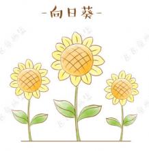 向日葵花怎么画?向日葵的儿童画简笔画画法 向日葵手绘教程图解