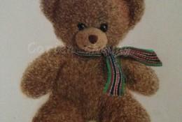 写实泰迪熊熊娃娃彩铅画教程图片 小熊娃娃的彩铅画画法