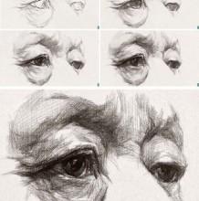 素描眼睛的画法 眼睛的素描结构展示图片多款 眼睛的素描教程步骤