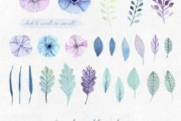 超全植物花卉素材图片集合 喜欢水彩画植物系的同学一定要收藏哦