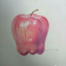 苹果蛇果的彩铅画手绘教程图片 好看逼真的蛇果怎么画 写实苹果的画法