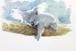 可爱树袋熊水彩画手绘教程 树袋熊的画法 树袋熊水彩画怎么画