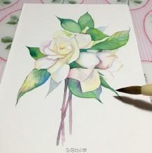 栀子花水彩画手绘教程图片 栀子花水彩画的画法 栀子花水彩怎么画