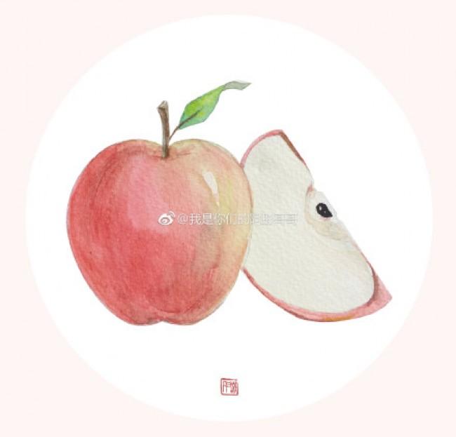 日常水果水彩手绘画图片素材 苹果,香蕉,李子,琵琶,西瓜,火龙果,菠萝