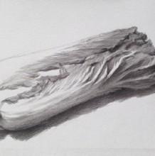 白菜素描画的画法 白菜素描怎么画 白菜素描手绘教程图片 有实物参考