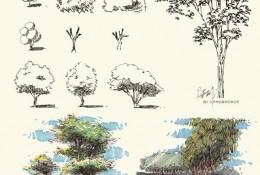 常见植物树木景观马克笔手绘教程图片 针管笔签字笔钢笔搭配马克笔景观效果