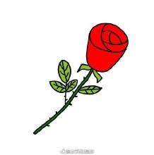 简单的一枝玫瑰花的简笔画画法手绘教程图片 一枝玫瑰花怎么画
