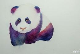 熊猫水彩画图片 熊猫水彩画手绘教程图片 熊猫水彩怎么画画法