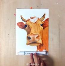 超逼真牛的马克笔手绘图片 牛怎么画 动物毛发的重要性