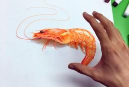 马克笔画超逼真虾手绘教程图片 立体逼真通透的虾马克笔上色效果