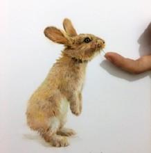 小兔子彩铅画图片 兔子彩铅手绘教程 兔子怎么画 兔子彩铅的画法