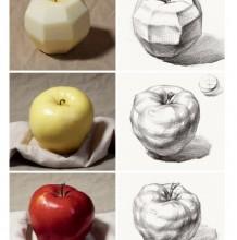 常见蔬菜水果素描结构展示画法分析 苹果,李子,香蕉的塑素描结构线 阴影关系