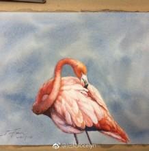 火烈鸟水彩画图片 火烈鸟水彩手绘教程 火烈鸟怎么画 画法