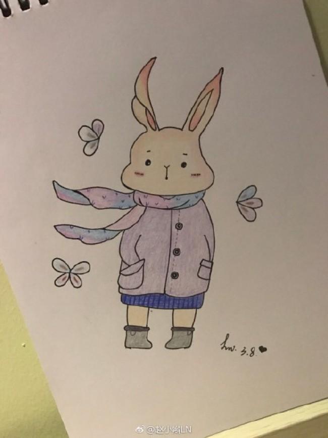 可爱萌的小兔子彩铅简笔画图片穿衣服带围巾的小兔子手绘教程 图片 9P
