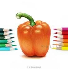 蔬菜圆椒彩铅画图片 红椒彩铅画手绘教程 辣椒怎么画 辣椒彩铅的画法
