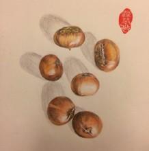 栗子彩铅画图片 栗子彩铅画手绘教程 栗子怎么画 栗子的画法
