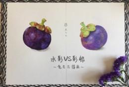 水果皇后山竹彩铅水彩画图片 山竹水彩手绘教程 山竹彩铅怎么画画法