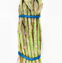 82张蔬菜水果彩铅画图片素材 蔬菜水果彩铅画高清图片